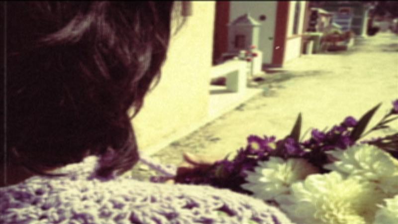 pluma still flowers